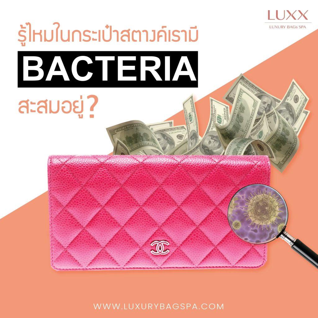 รู้ไหมในกระเป๋าสตางค์เรามีแบคทีเรียซ่อนอยู่